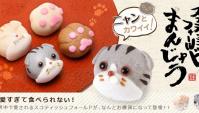 Шотландская вислоухая кошка Манджу слишком милая, чтобы съесть?!