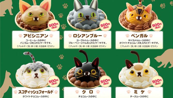 Очаровательные кошки в виде лепешки из Токио!