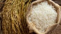 Вся правда о поддельном рисе: эксперименты и комментарий Роспотребнадзора