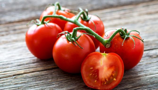 Как люди перестали бояться помидоров: немного интересного о любимом овоще взрослых и детей