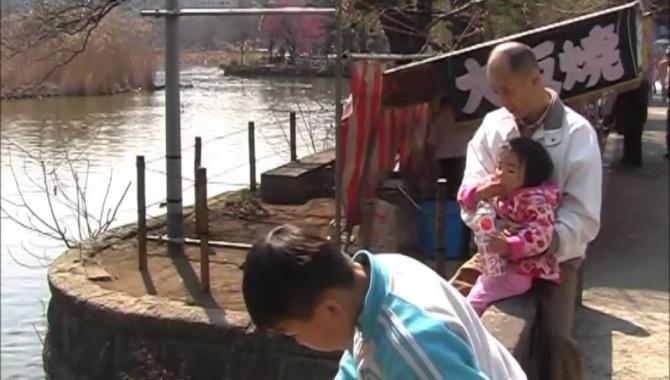 Весенний парк Уэно и японская кухня