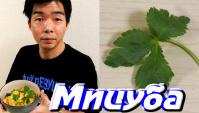 «Мицуба» - красивая съедобная трава