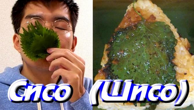 «Шисо» - одно из лекарственных растений