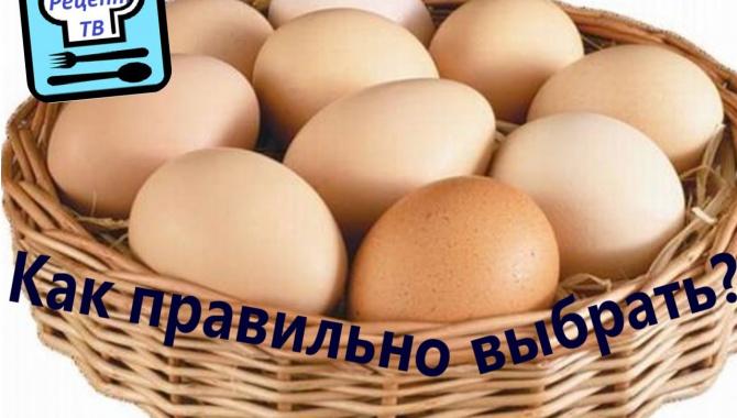 Как правильно выбрать куриные яйца в магазине?