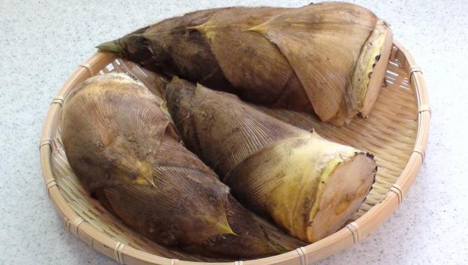 Как готовить побеги бамбука