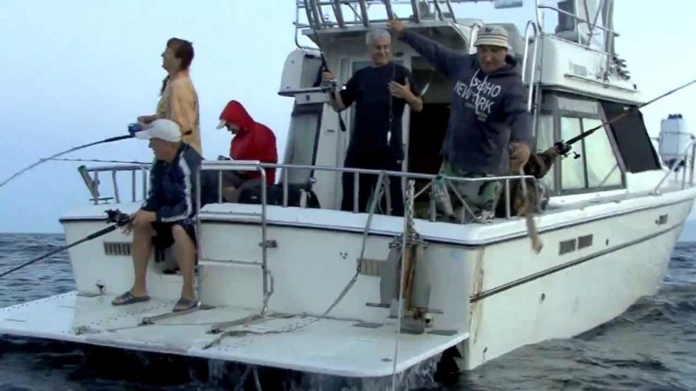 где ловить кальмар
