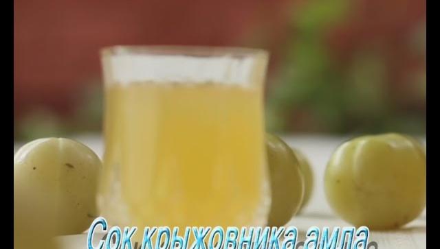 Сок крыжовника - амла. Рецепт индийской кухни.