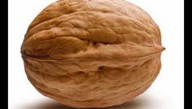 Секретный способ Колоть Орехи в Новый Год!