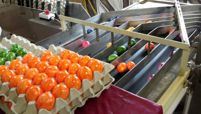 Как красят яйца на пасху - механизированный способ!