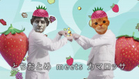 Японская Реклама - Morinaga Hi-Chew