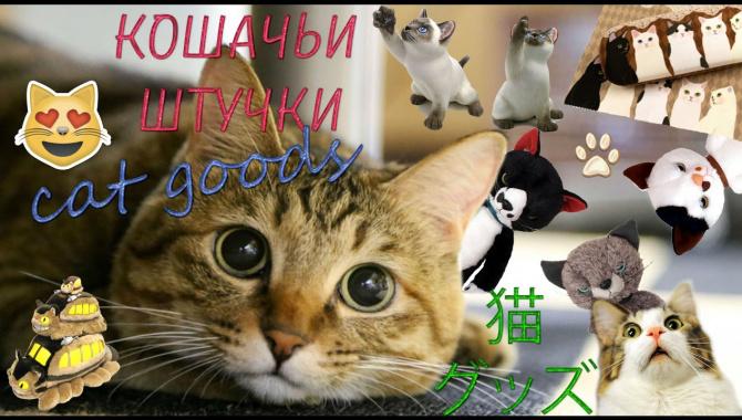 Японские товары с котиками! (Видео)