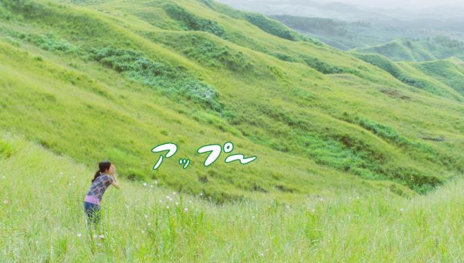 Японская Реклама - Suntory Rich Malt