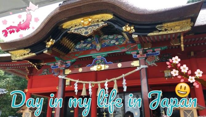 Посылка. Японский храм и чудо суп (Видео)