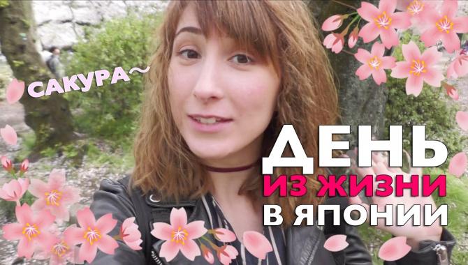 День из жизни в Японии. Цветение сакуры и день рождения Сомэ (Видео)