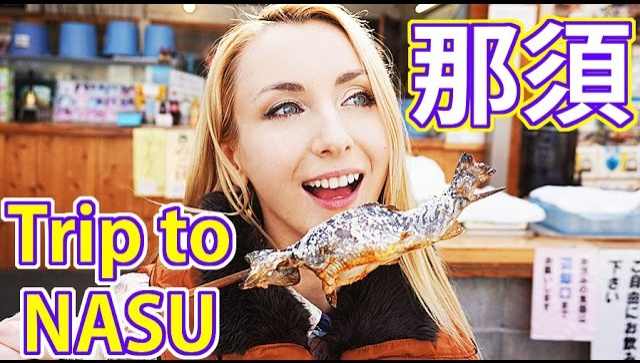 Рейд по вкусным кафе и магазинчикам в японском городе Насу (Видео)