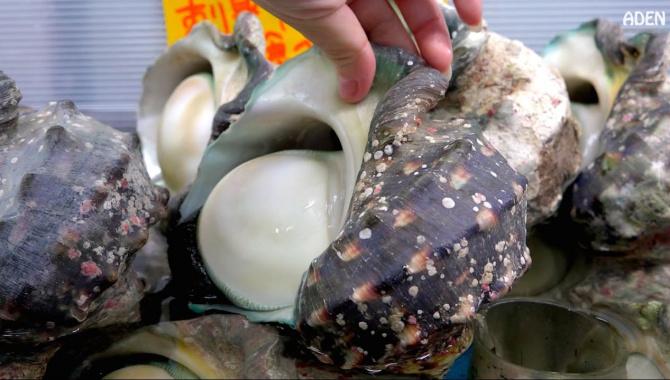 Японская уличная еда: гигантская морская улитка (Якогай) - Видео