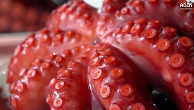 Японская уличная еда в рыбном порту: Темпура, осьминог, жареный угорь (Видео)