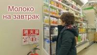 Утренняя прогулка за молоком - не японский завтрак (Видео)