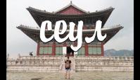 СЕУЛ: меня не пустили в США и корейцы едят собак? (Видео)