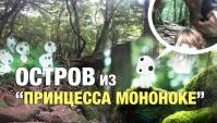 Остров из аниме Принцесса Мононоке и поездка на Кагосима (Видео)