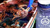 Рынок морепродуктов Хакодате, Япония - Видео