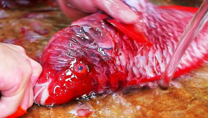 Японская уличная еда - приготовление блюд с Красным групером