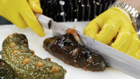 Корейская уличная еда - Голоту́рии или морские огурцы (Видео)