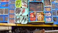 Плавучий рынок морепродуктов в Гонконге (Видео)