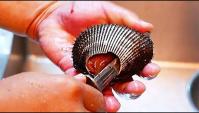 Уличная еда в Японии - Красный моллюск суши сашими (Видео)