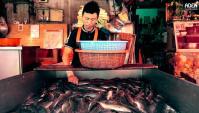 Рынок Клонг Той в Бангкоке (Видео)