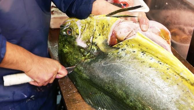 Уличная еда в Японии - Гигантская рыба Махи-махи (Видео)