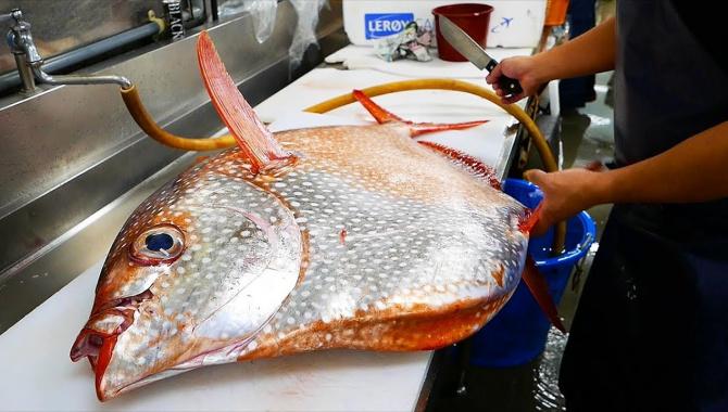 Уличная еда в Японии - Краснопёрый опах или солнечная рыба (Видео)