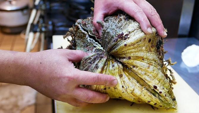Уличная еда в Японии - Гигантский морской моллюск (Видео)