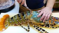 Уличная еда в Японии - Гигантский радужный омар сашими (Видео)