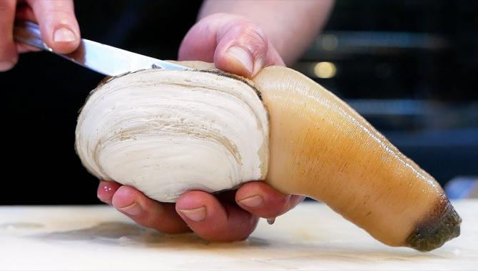 Уличная еда в Японии - Гигантский Моллюск Гуидак (Видео)