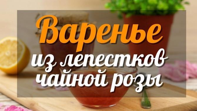 Варенье из лепестков чайной розы в домашних условиях - Видео-рецепт
