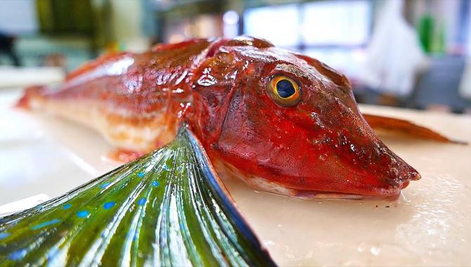 Уличная еда в Японии - Тригловые или морские петухи (Видео)
