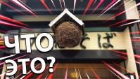 Быстрые факты о Японии. Странный японский шар - ЧТО ЭТО? (Видео)