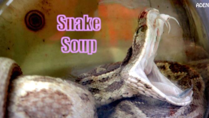Змеиный суп в Гонконге (Видео)