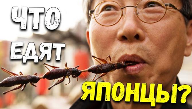 В Японии едят насекомых. Рискнете попробовать? Странная японская еда (Видео)