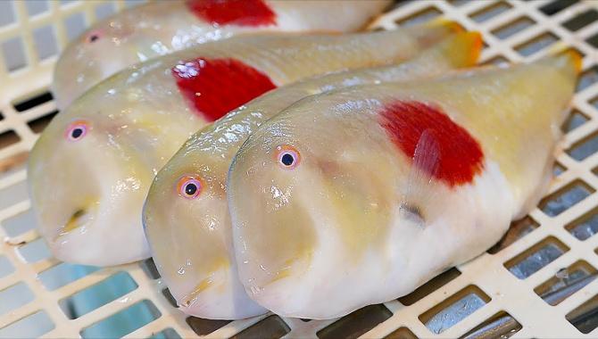 Уличная еда в Японии - Рыба Японский Флаг (Видео)