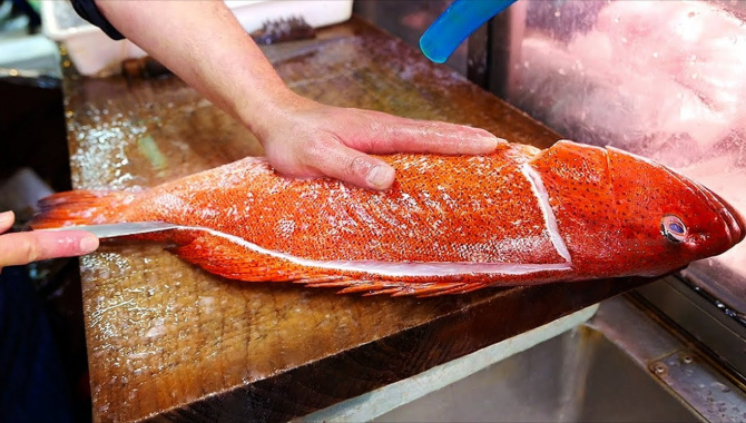 Уличная еда в Японии - Групер красный коралловый (Видео)