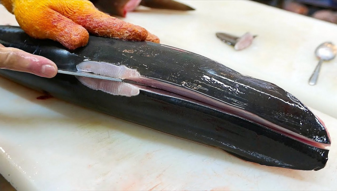 Японская Еда - Приготовление блюд из Акулы (Видео)