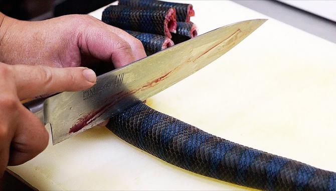 Уличная еда в Японии - Ядовитая морская змея (Видео)
