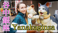 Город кошек в Токио - Янака Гинза (Видео)