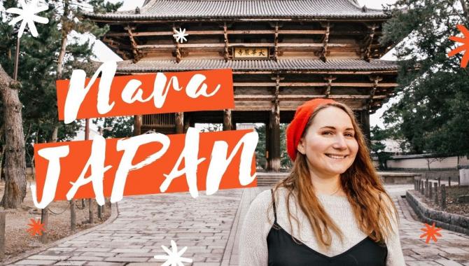 Япония! 1 День в Наре (Олени + Первая Японская Еда)