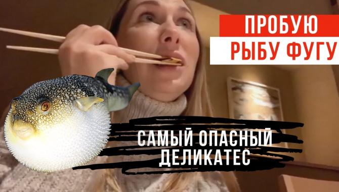 Рыба Фугу - Опасный Японский Деликатес (Видео)