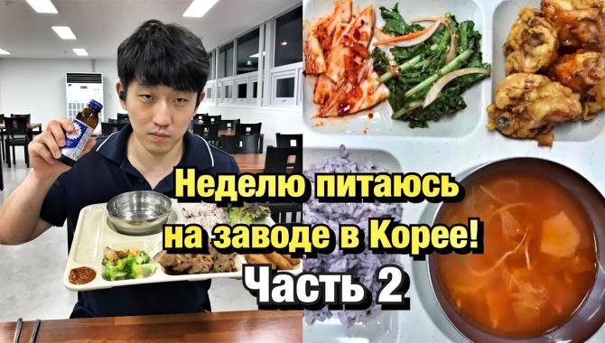 Чем кормят на заводе в Корее? (Видео)