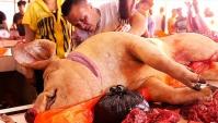 Индонезийская уличная еда - Свиные ребрышки (Видео)